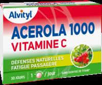 Govital Acerola 1000 à ODOS