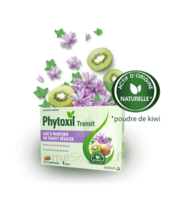 Phytoxil Transit Comprimés B/20 à ODOS