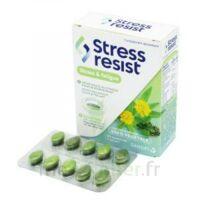 Stress Resist Comprimés Stress & Fatigue B/30 à ODOS
