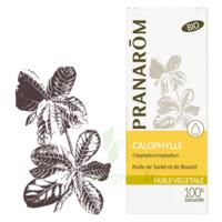 Pranarom Huile Végétale Bio Calophylle 50ml à ODOS