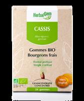 Herbalgem Gomme Cassis Bio B/24 à ODOS