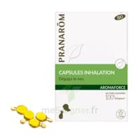 Aromaforce Caps Inhalation Bio B/15 à ODOS
