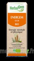 Herbalgem Energem Solution Buvable Bio Fl Cpte-gttes/30ml à ODOS