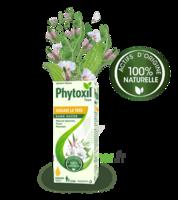 Phytoxil Toux Sans Sucre Sirop Adulte Enfant +2 Ans Fl/120ml à ODOS
